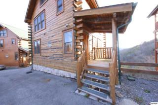 2664 Mountain Preserve Drive, Sevierville, TN 37862 (#209972) :: SMOKY's Real Estate LLC
