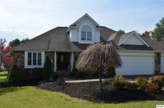 1119 Evergreen Trail, Dandridge, TN 37725 (#209974) :: Colonial Real Estate