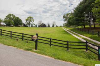 3601 Sugar Tree Dr, Sevierville, TN 37862 (#209975) :: SMOKY's Real Estate LLC