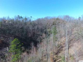 Running Bear Parcel 110 003., Cosby, TN 37722 (#209981) :: SMOKY's Real Estate LLC