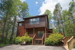 418 Pa Proffitt Rd, Gatlinburg, TN 37738 (#209984) :: Colonial Real Estate