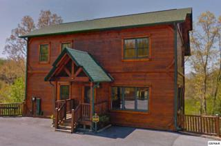 "802 Great Smoky Way ""Black Bear Bun, Gatlinburg, TN 37738 (#210001) :: Colonial Real Estate"