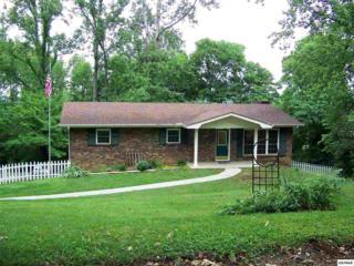116 Valerie Lane, Seymour, TN 37865 (#210006) :: Colonial Real Estate