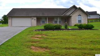1426 Foxfire Circle, Seymour, TN 37865 (#210015) :: Colonial Real Estate