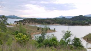 Lot 25 Belle Isle Dr, Sevierville, TN 37876 (#210028) :: Colonial Real Estate