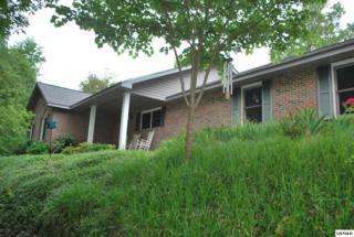 325 Gossett Way, Seymour, TN 37865 (#210034) :: Colonial Real Estate