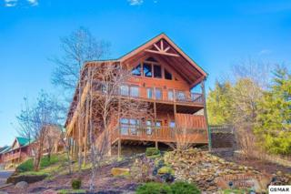 510 Blackberry Ridge Way Duck Inn Lodge, Pigeon Forge, TN 37863 (#210038) :: Colonial Real Estate