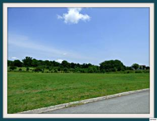 Lot 16 Horizon Dr., Baneberry, TN 37890 (#210053) :: Colonial Real Estate