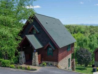 1619 Jed Trail Cabin 5, Sevierville, TN 37862 (#210058) :: Colonial Real Estate