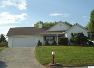 217 Dove Drive, Sevierville, TN 37876 (#210061) :: Colonial Real Estate