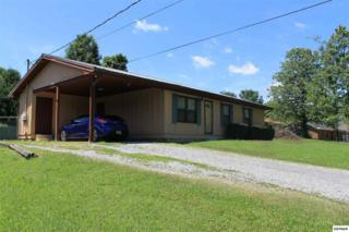 2032 Arch Rock Dr, Sevierville, TN 37876 (#210063) :: Colonial Real Estate