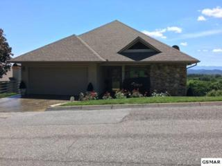 323 Maggie Mack Lane, Sevierville, TN 37862 (#210066) :: Colonial Real Estate