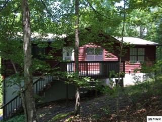 3530 Walker Way, Sevierville, TN 37862 (#210068) :: Colonial Real Estate