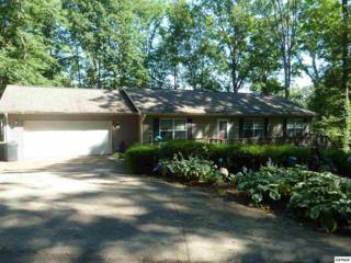 2091 Highpoint Lane, Sevierville, TN 37876 (#210072) :: Colonial Real Estate
