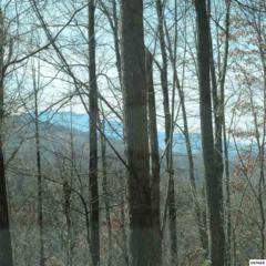 Parcel 062.04 Greasy Cove Road, Cosby, TN 37722 (#210074) :: Colonial Real Estate