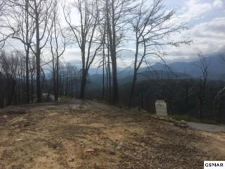749 Village Loop Road Lot 650, Gatlinburg, TN 37738 (#210075) :: Colonial Real Estate