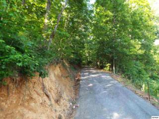 Parcel 062.02 Greasy Cove Road Parcel 062.03 G, Cosby, TN 37722 (#210076) :: Colonial Real Estate