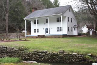 1139 Glades Rd, Gatlinburg, TN 37738 (#208564) :: Colonial Real Estate