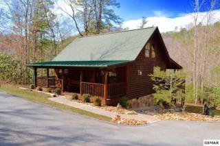 1836 Laural Valley Way, Sevierville, TN 37862 (#208621) :: Colonial Real Estate