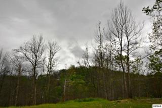 803 Crestwood Ln, Gatlinburg, TN 37738 (#209605) :: Colonial Real Estate