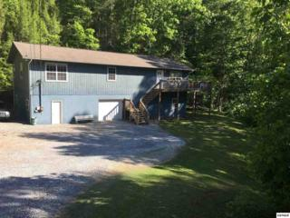 3402 Lillie Blvd, Sevierville, TN 37862 (#209804) :: Colonial Real Estate