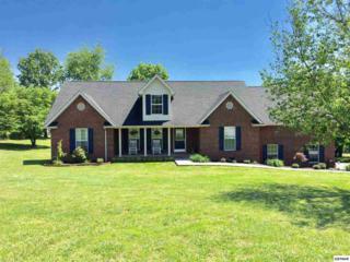 2727 Barnes Blvd, Sevierville, TN 37876 (#209957) :: Colonial Real Estate