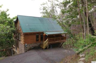 569 Forest Springs Dr Bird's Eye View, Gatlinburg, TN 37738 (#209983) :: SMOKY's Real Estate LLC