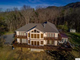1628 Mccarter Hollow Road, Sevierville, TN 37862 (#210010) :: Colonial Real Estate