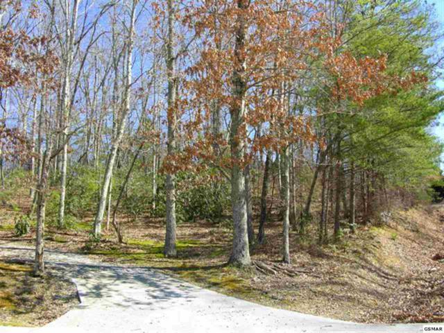 Lot 24 Pleasant View Ln, Sevierville, TN 37862 (#187664) :: Four Seasons Realty, Inc
