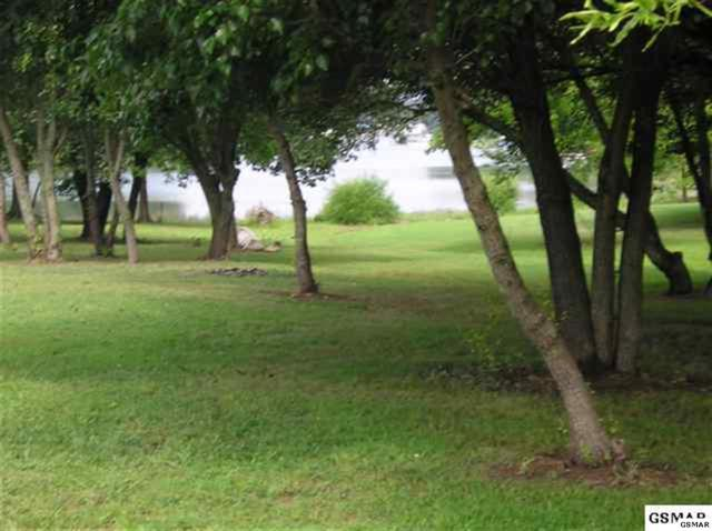 Lot 30 Wild Pear Trail, Dandridge, TN 37725 (#187752) :: Billy Houston Group