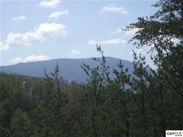 Lot 34 Trace Way, Sevierville, TN 37862 (#188434) :: Four Seasons Realty, Inc