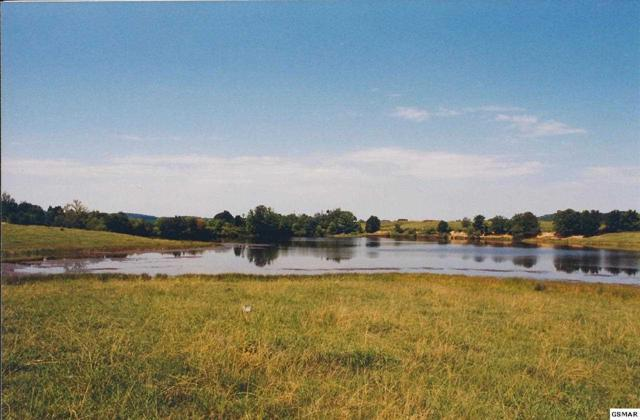 Lot 136 Fair Meadow Drive, Dandridge, TN 37725 (#193101) :: Four Seasons Realty, Inc