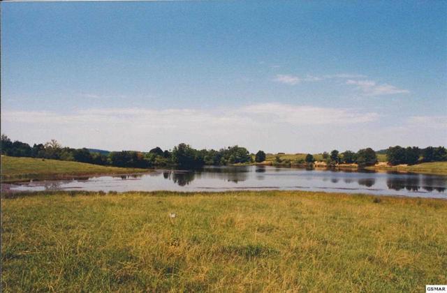 Lot 131 Fair Meadow Drive, Dandridge, TN 37725 (#193111) :: Four Seasons Realty, Inc