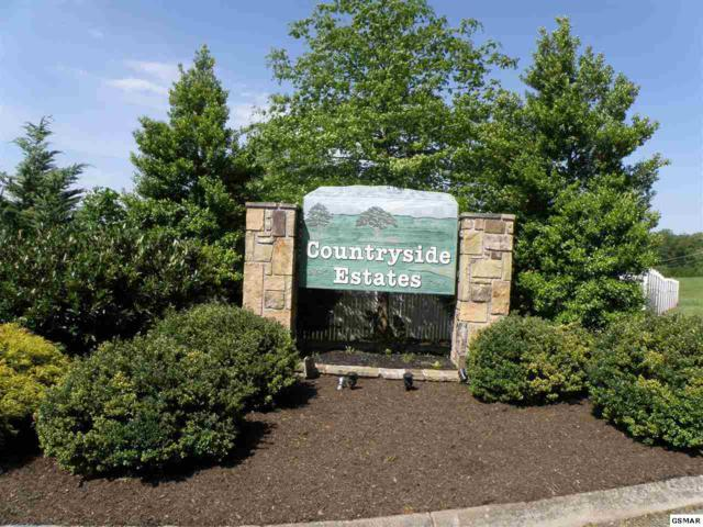 Lot 5 Bryson Ct., Sevierville, TN 37876 (#194768) :: Colonial Real Estate