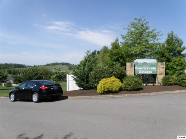 Lot 25 Rhubarb Lane Corner Of Bryso, Sevierville, TN 37876 (#194780) :: Colonial Real Estate