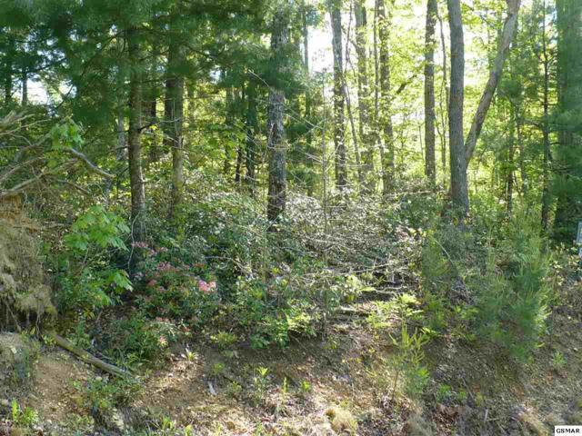89 Bird View Lane, Sevierville, TN 37862 (#196173) :: Colonial Real Estate
