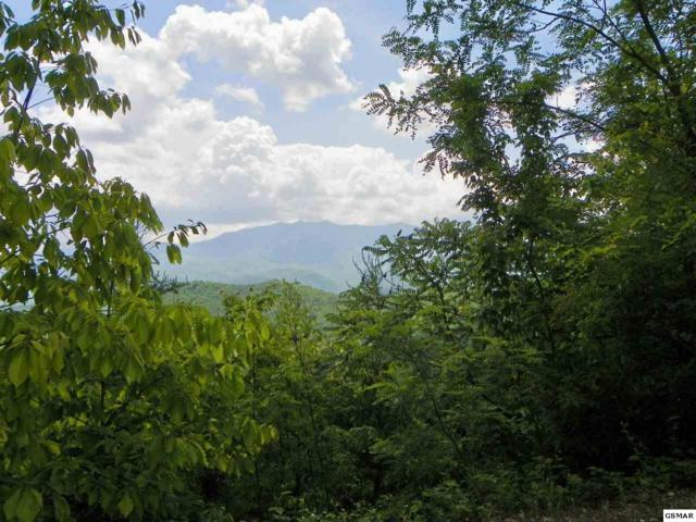 Lot 45 Cumberland Way Enclave At Cove, Gatlinburg, TN 37738 (#197799) :: The Terrell Team
