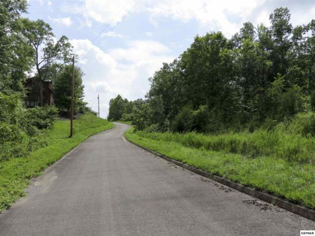 Lot 113 Timber Court, Dandridge, TN 37725 (#198215) :: Billy Houston Group