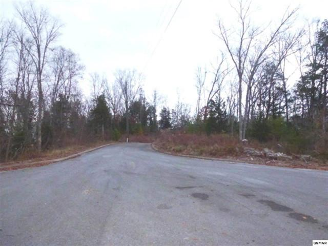 Lot 55 Oak Lake Dr., Sevierville, TN 37876 (#199228) :: Billy Houston Group