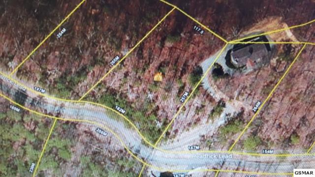 Lot 2 Headrick Lead, Sevierville, TN 37862 (#199860) :: Colonial Real Estate