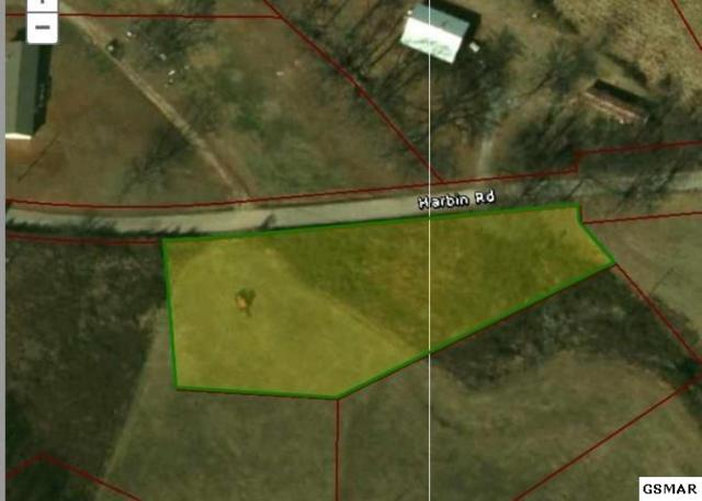 Lot 9 Waterway Drive, Rutledge, TN 37861 (#200949) :: Billy Houston Group