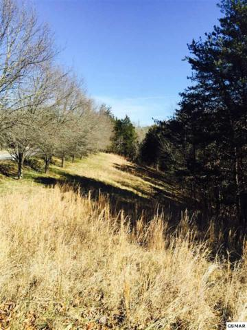 Lot 12 Hopson Street, Sevierville, TN 37876 (#201140) :: Colonial Real Estate
