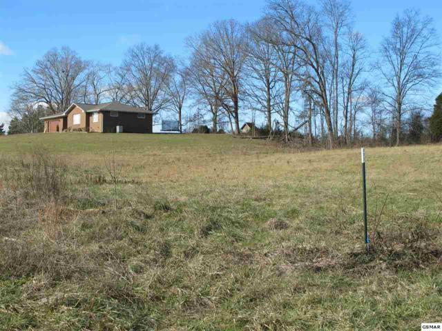 Lot 15 Sybill Lee Lane, Sevierville, TN 37876 (#201153) :: Billy Houston Group