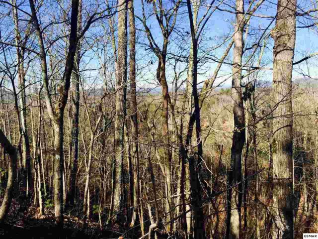 Lot 15 Tekoa Mtn Way, Sevierville, TN 37876 (#201154) :: Billy Houston Group