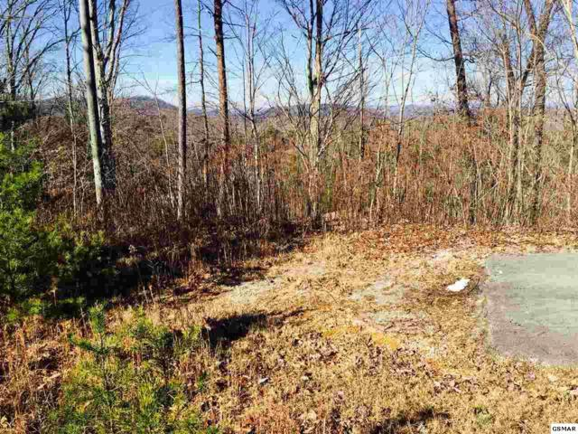 Lot 18 Tekoa Mtn. Way, Sevierville, TN 37876 (#201155) :: Billy Houston Group