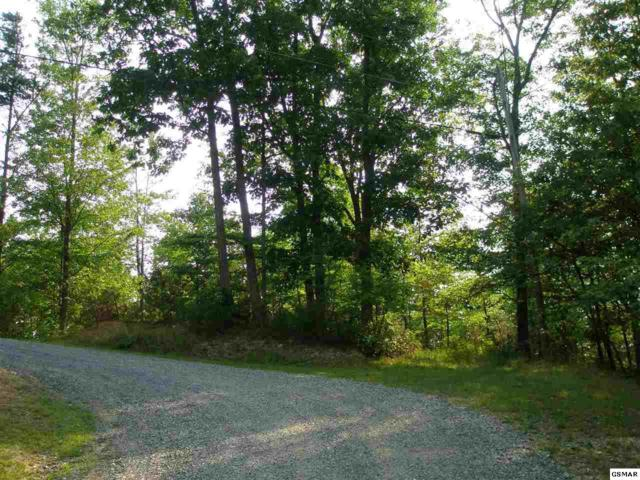 Lot 13 & 14 Bear Paw Ridge Way, Sevierville, TN 37862 (#202022) :: Colonial Real Estate