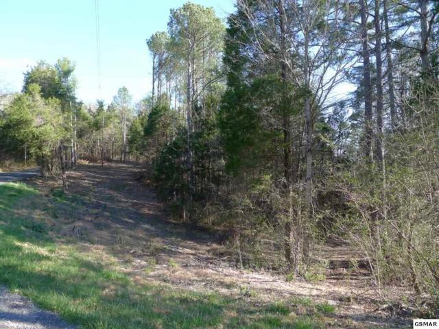 Lot 57 Bootbluff Trail, Dandridge, TN 37725 (#202204) :: Four Seasons Realty, Inc