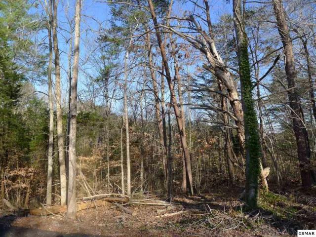 Lot 2 Tuscon Trail, Dandridge, TN 37725 (#202205) :: Four Seasons Realty, Inc