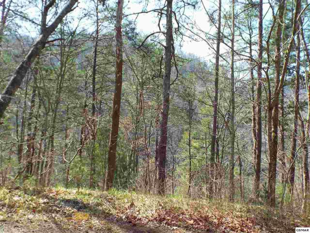 Parcel 015.0 Sunset Road, Sevierville, TN 37862 (#202261) :: Colonial Real Estate
