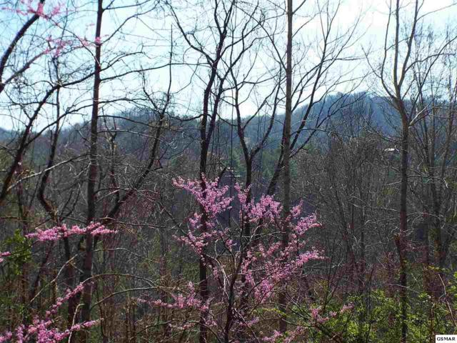 Parcel 026.00 Sunset Circle, Sevierville, TN 37862 (#202264) :: Billy Houston Group